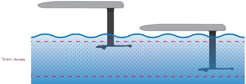 Foil Wing Surf